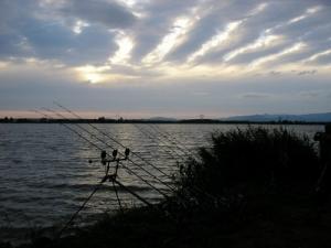 Adacs 2005
