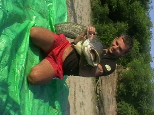Taliansko lov sumcov