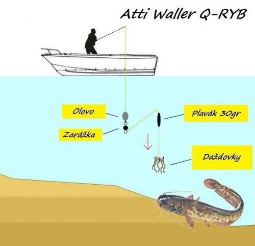 Atti Waller